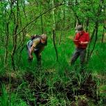 Jetzt bewerben fürs Freiwillige Ökologische Jahr