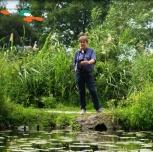 Film über das Niedrigwasser im Rohrdommel-Gebiet