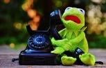 Biologische Station derzeit von Internet und Telefon abgeschnitten!
