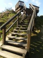 Die Aussichtsplattformen im Naturschutzgebiet Brachter Wald werden erneuert